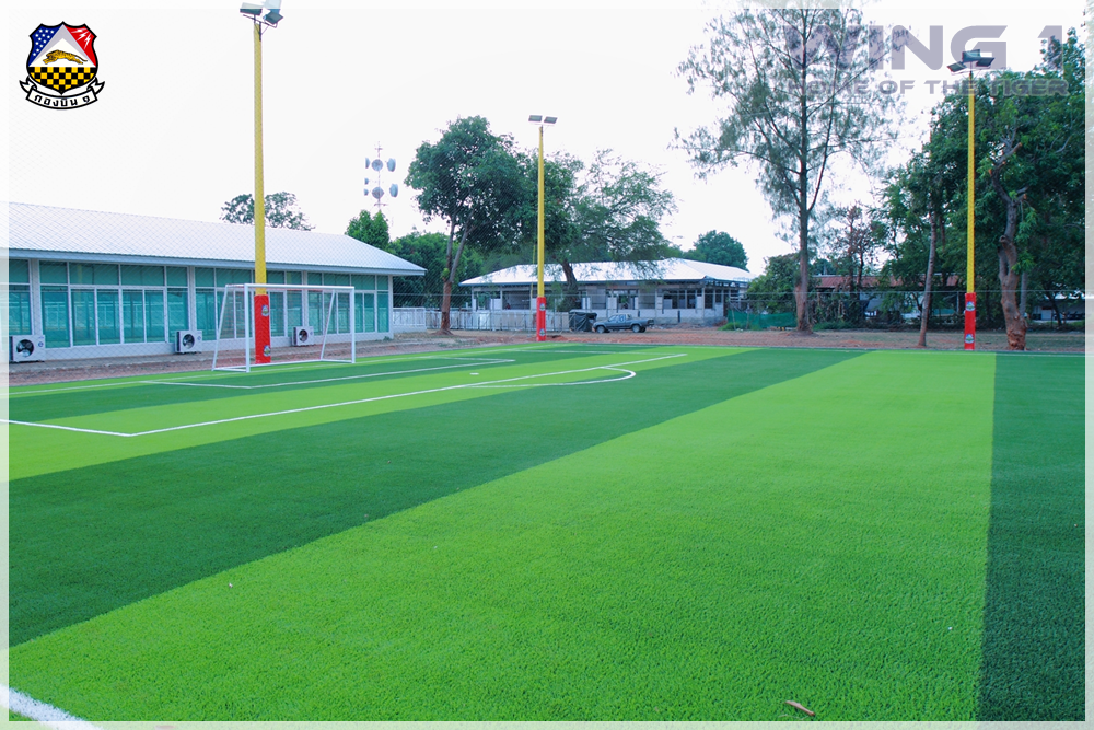 Artificial-grass-football-field 8