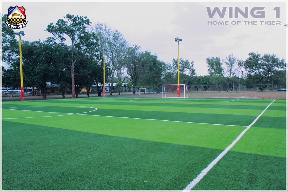 Artificial-grass-football-field 9